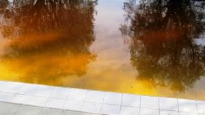 Reflets d'or (au fond de la piscine)