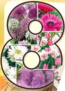 8 fleuri