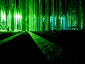 Forêt verte (Yann Kersalé)