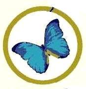 Mon papillon