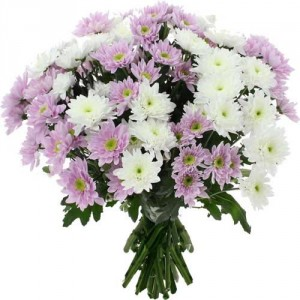 Bouquet chrysantèmes