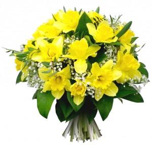 Bouquet jonquilles et gypsophiles