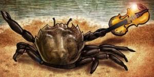 Crabe violoniste (par Korosumaru)