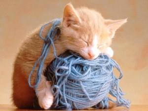 Coussin pelote de laine