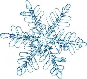 Étoile des neiges 2