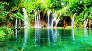 Paradis vert