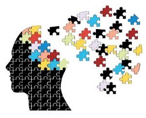 Pièces du puzzle
