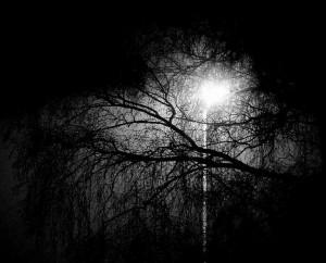 Une nuit...