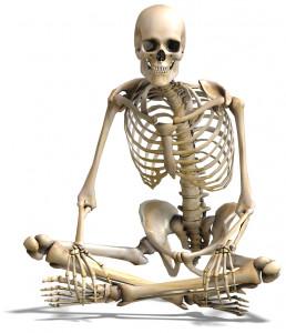 Squelette bis